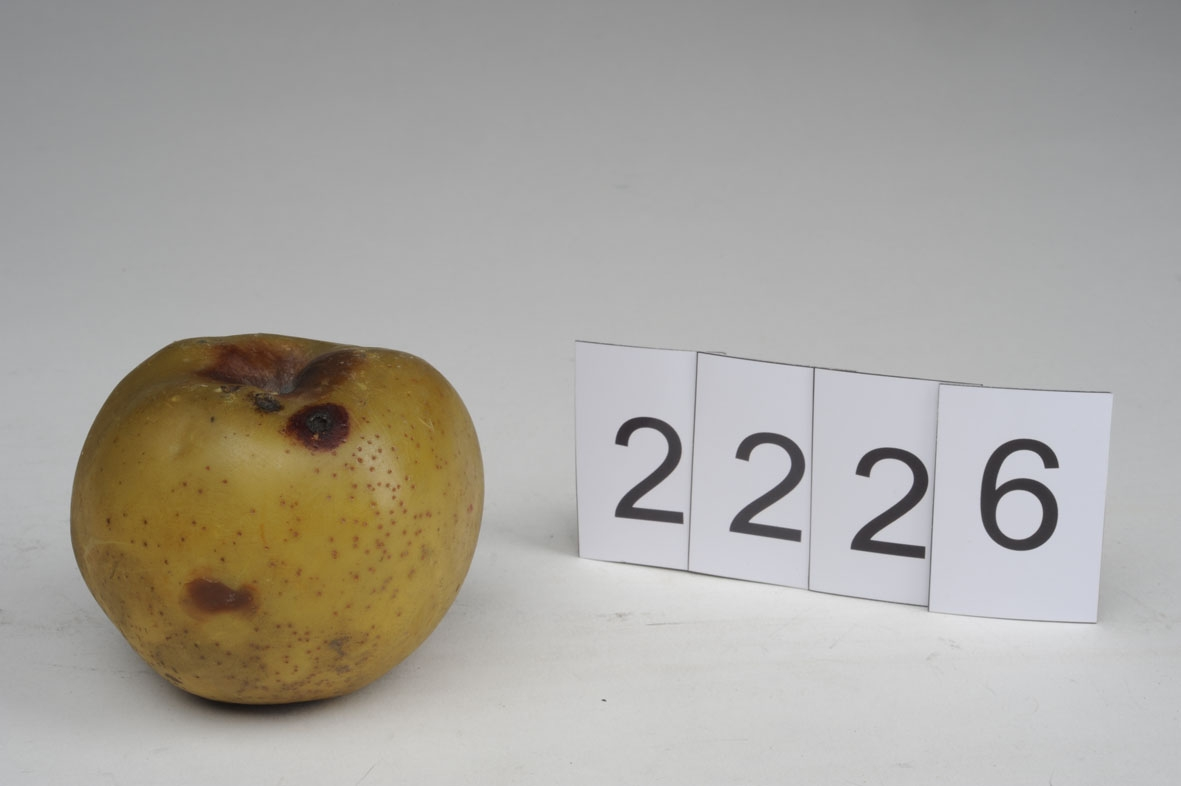 Obst, künstliches