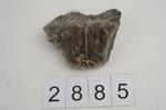 Mineral/Gestein