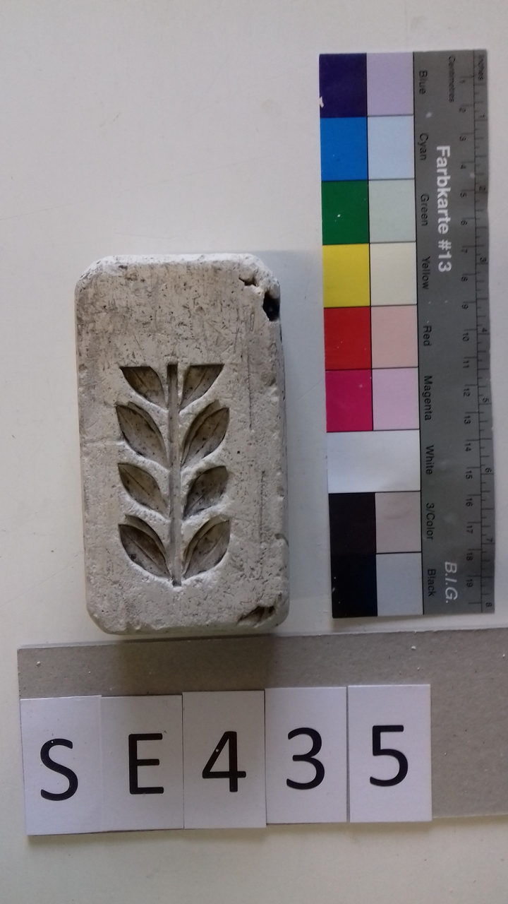 Negativform Detail Stängel mit Blättern